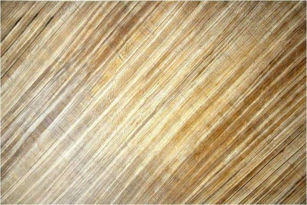 BeLeaf veneer from banana tree branches. UK