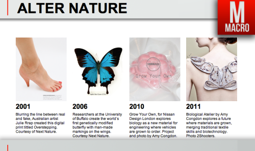 Alter Nature trend time line featured by Trends Gallery